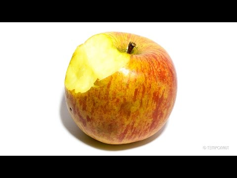 Apple Timelapse Video
