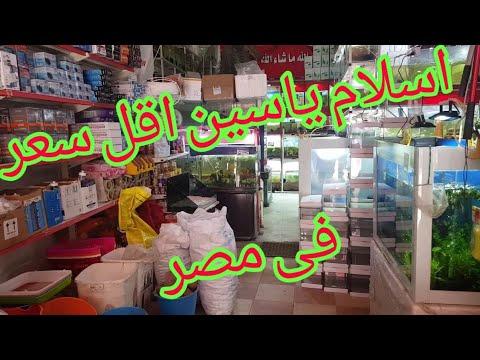 اسلام ياسين يضرب اسعار السوق اسعار ببلاش اسماك وجميع مستلزمات الأحواض