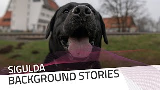 The athletes from... a dog's viewpoint | IBSF Official