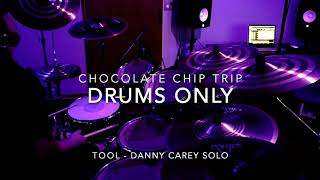 Chocolate Chip Trip - DRUMS ONLY (Tool Cover)