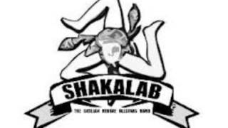 03. Mr.Policeman - Shakalab