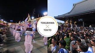 Festival - TOKUSHIMA