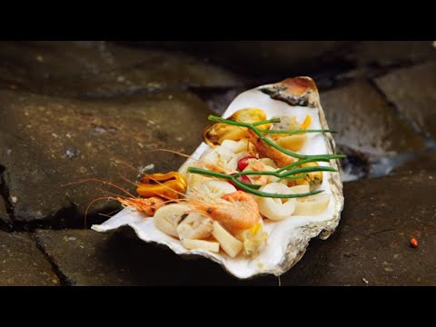 The Great Welsh Coastal Foraging Catch And Cook