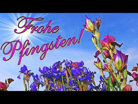 frohe-pfingsten,-lustige-grüße-zu-pfingsten,-wünsche-schönes-pfingstfest,-lieder-von-thomas-koppe