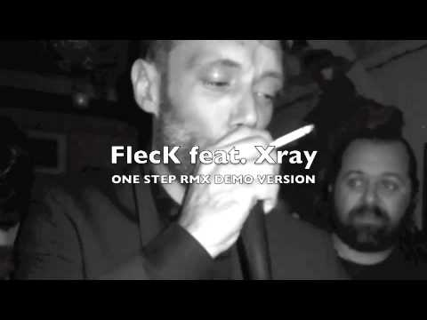 FLECK+XRAY onestep DEMO