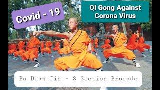 Qi Gong Against Corona Virus ( Covid-19 ) - Ba Duan Jin   8 Section Brocade   Shaolin Kung Fu Nepal