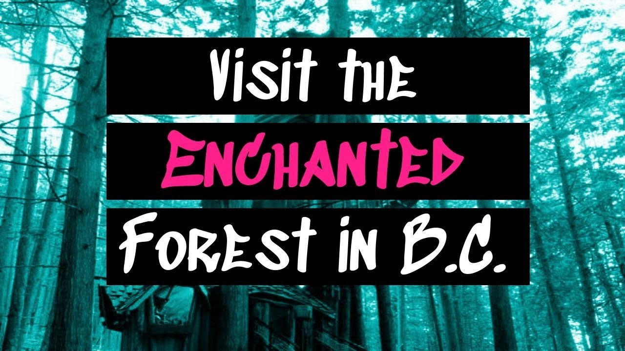 Enchanted Forest In British Columbia