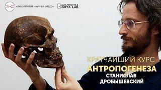 Кратчайший курс антропогенеза. Станислав Дробышевский