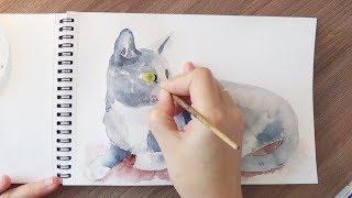 Как нарисовать кота акварелью. Уроки рисования. Скетчинг