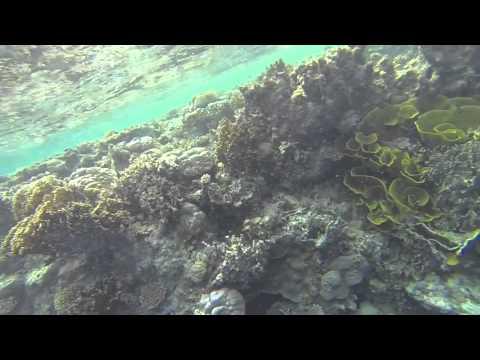 HawaiiMicronesiaAug2015