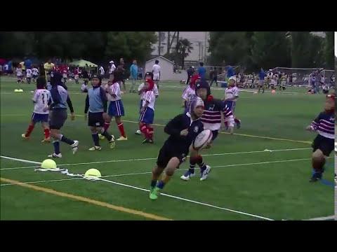 Louie Kishimoto Rugby Footage 2016