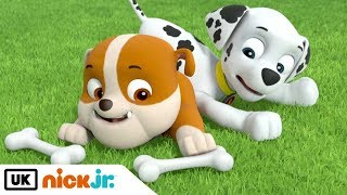 Paw Patrol | Pups Save Old Trusty | Nick Jr. UK