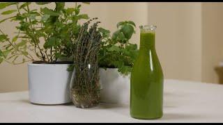VERDU IR KEPU | Rokas gamina naminį žolelių aliejų | 2020
