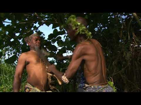 CONGO RIVER - bande-annonce