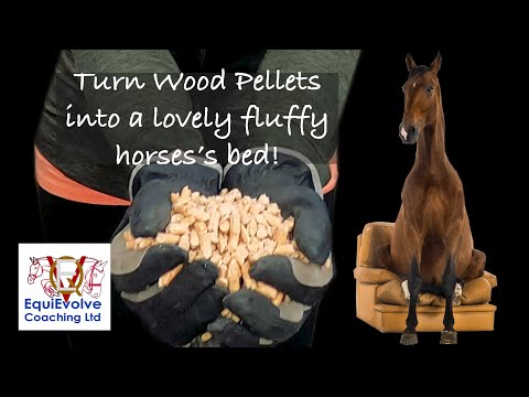 How To Use Wood Pellets As Bedding For A Horse