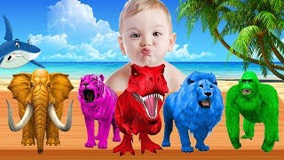 Learn Colors With Animals Colorful For Children Kids | Learning Color Videos For Toddlers