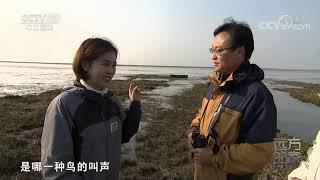 [远方的家]行走青山绿水间 大汊湖里寻白鹤| CCTV中文国际