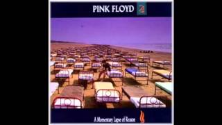 Pink Floyd - Signs of Life