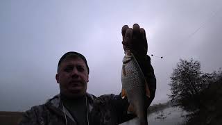 Рыбалка на реке ДОН Ловлю весеннюю плотву