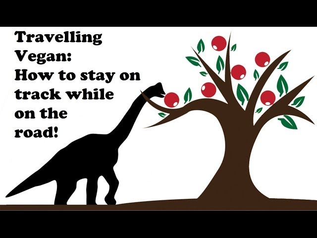 Vegan travelling: How to stay hcrv on the road