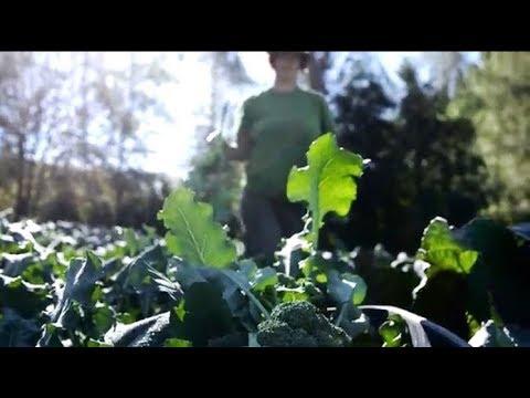Food Roots in Tillamook County, Oregon