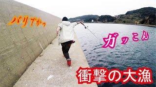 堤防からジグを落とし歩くだけで衝撃の結果に・・・ thumbnail