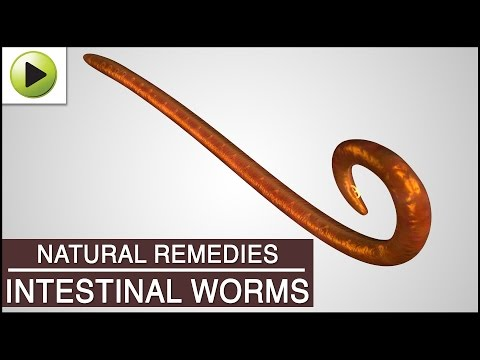 Intestinal Worms - Natural Ayurvedic Home Remedies