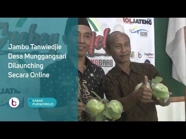 Jambu Tanwiedjie Desa Munggangsari Dilaunching Secara Online