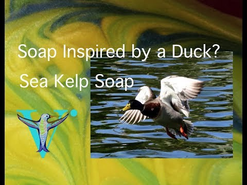 Soap Inspired by a duck???  Sea Kelp Cold Process Soap
