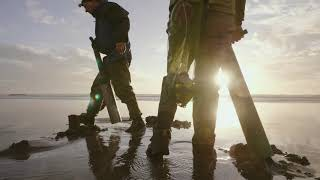 Razor Clam Dig on the Washington Coast