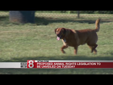 Proposed animal rights legislation to be unveiled