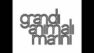 Watch Grandi Animali Marini Lestate E Bellissima video