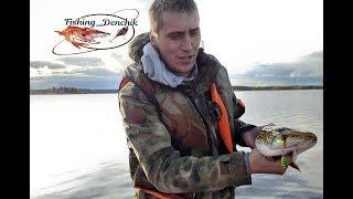 Душевная рыбалка на Рыбинском водохранилище В поисках осеннего хищника