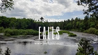 Tahquamenon River & Falls - Paradise Michigan - Road Trip - Travel Blog