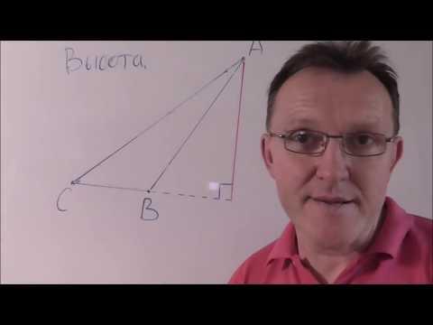 Медиана биссектриса и высота треугольника . Геометрия 7 класс.