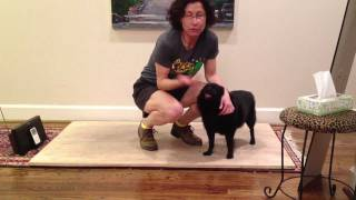 #11 Flatfooting lesson - Forward Chug (