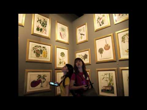 National Museum Of Singapore -One Minute Singapore-