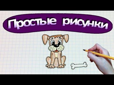 Урок рисования : Собака Бигль! How to draw a dog (beagle).