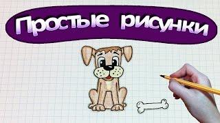 Простые рисунки #332 Как нарисовать собаку