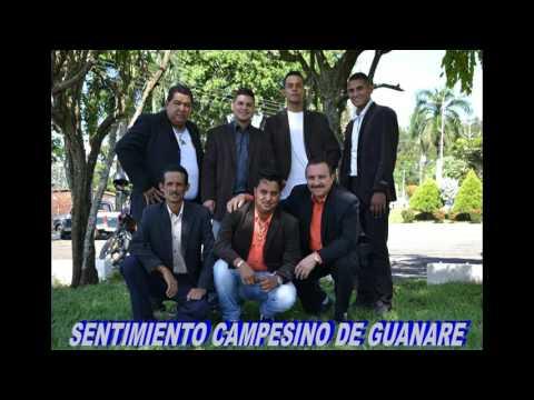 SENTIMIENTO CAMPESINO DE GUANARE