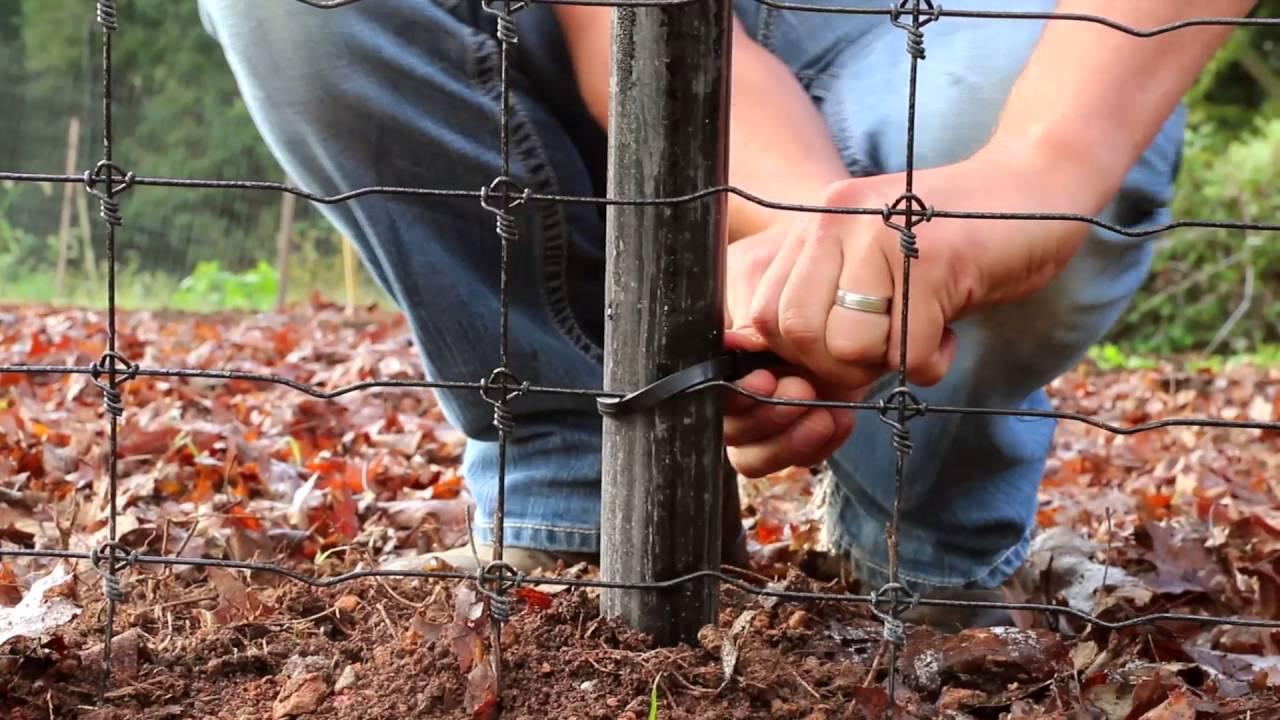 Installing deer fencing on a slope