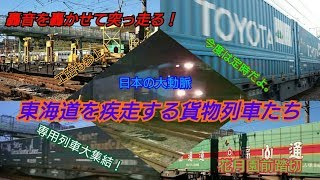 【貨物列車】【スーパーレールカーゴ】轟音を轟かせて突っ走る! 東海道を疾走する貨物列車たち 2018年11月30日 花月園前踏切