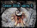 4 месяца в тайге. Сезон 2018. часть 5. Котлеты,  Олень, рыбалка, дождь BUSHCRAFT