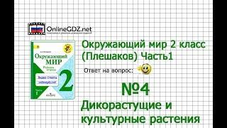 Задание 4 Дикорастущие и культурные растения - Окружающий мир 2 класс (Плешаков А.А.) 1 часть