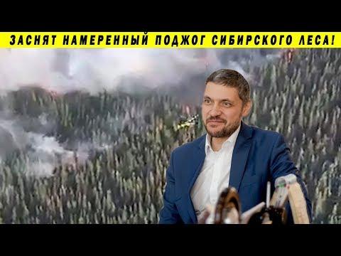 СТАЛ ГУБЕРНАТОРОМ - СДАЛ КРАЙ КИТАЮ В АРЕНДУ НА 49 ЛЕТ!