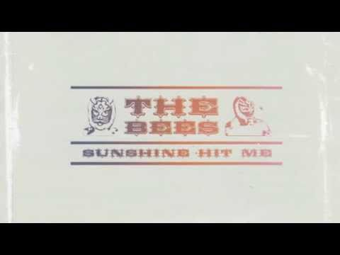 the-bees-sky-holds-the-sun-thesirbiznatch