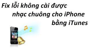 Fix lỗi không cài được nhạc chuông cho iPhone bằng iTunes