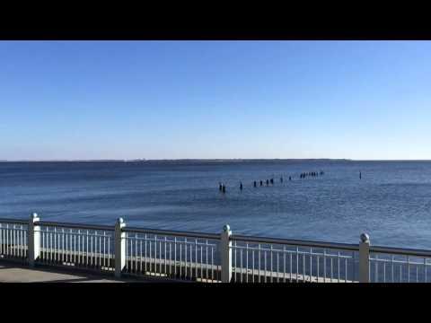 Pensacola Community Maritime Park
