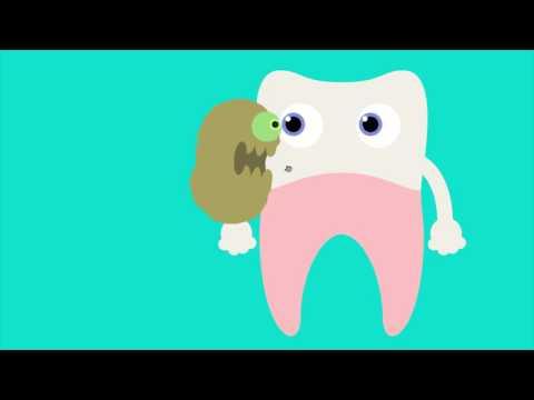 3M Encyclopedia of Oral Health Care Video Loop