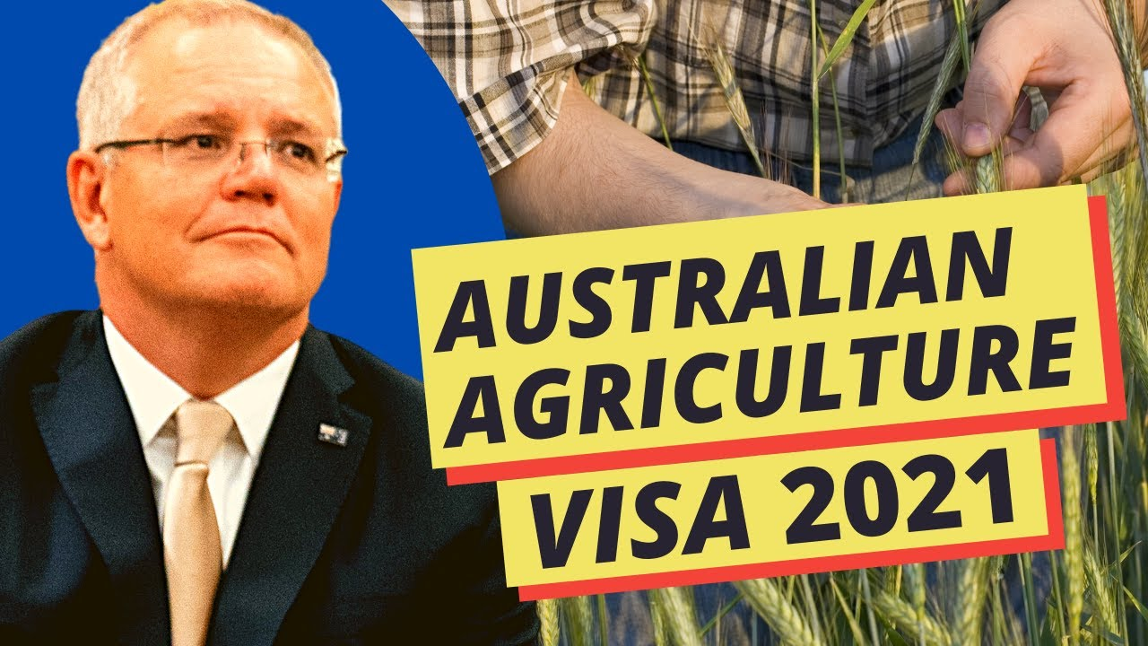 AUSTRALIA'S FARM WORKER VISA FOR LESS EDUCATED AND WITH LOW SCORE |  WORKING HOLIDAY VISA (S/C 417)